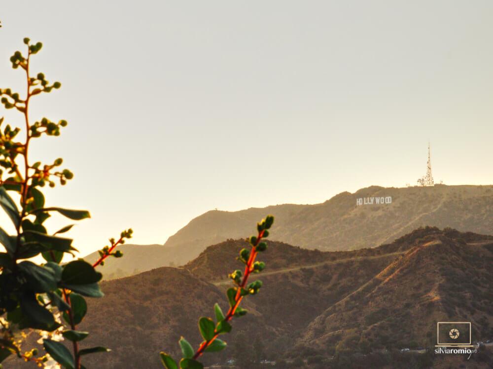 La scritta Hollywood a Los Angeles